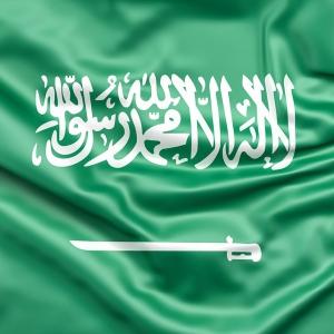 サウジアラビアアイコン