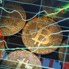 Dubai News: Dubai crypto firm says working with GCC regulators to overcome Saudi